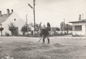 Ezen az 1960-as évekbeli képen Dezső József lett megörökítve, kaszálás közben. Háttérben Hragyil János fodrász műhelye látható, ami később Papp István fodrászmester tulajdonába került.    A fénykép bal szélén vasúti épület, alkalmazotti lakás figyelhető meg, középen pedig a Sirály strandra vezető útszakasz látszik, valamint a Sirály üdülő és étterem épületegység tornya bukkan fel a kaszáló alak mögött.