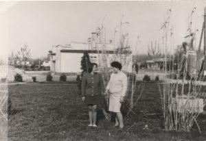 Háttérben az 1960-as évekbeli Sirály (korábban Karsay) cukrászda. Ma ugyanitt található a gárdonyi K&H Bank.