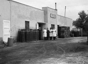 Az 1960-as években szikvíz üzem működött Gárdonyban. Ennek helyén ma autómosó található.