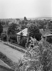 A fénykép a gárdonyi református templom tornyából lett megörökítve az 1960-as évek elején. Füster Gyula háza szerepel a fotón, a háttérben balra pedig a vasútállomás épülete magaslik.